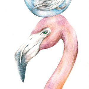 Flamingo & Whale