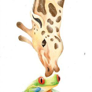 Giraffe & Frog