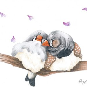 Zebra Finches in Love